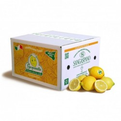 Biologic Lemon Box 12Kg